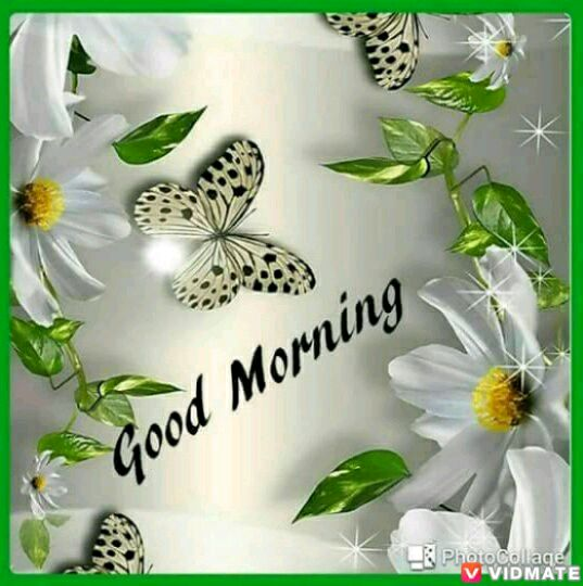 whatsapp-good-morning-english-12.jpg