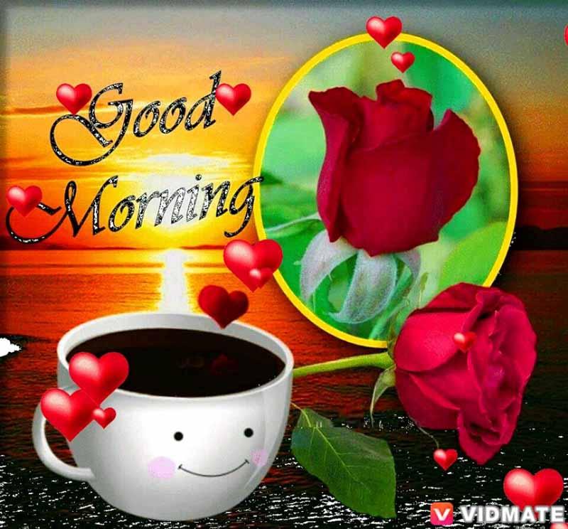 whatsapp-good-morning-english-17.jpg