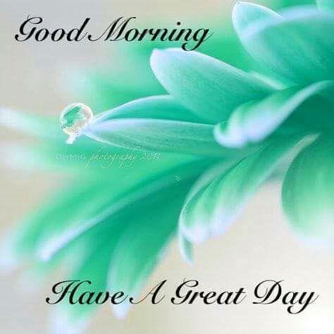 whatsapp-good-morning-english-19.jpg