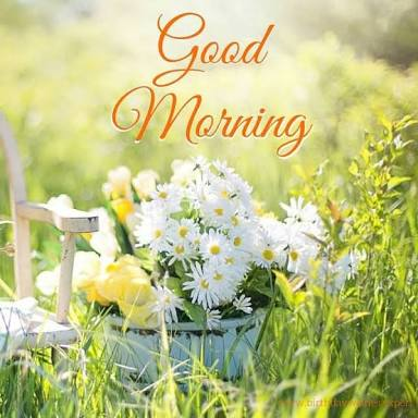 whatsapp-good-morning-english-23.jpg