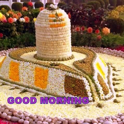 whatsapp-good-morning-image-in-english-10.jpg