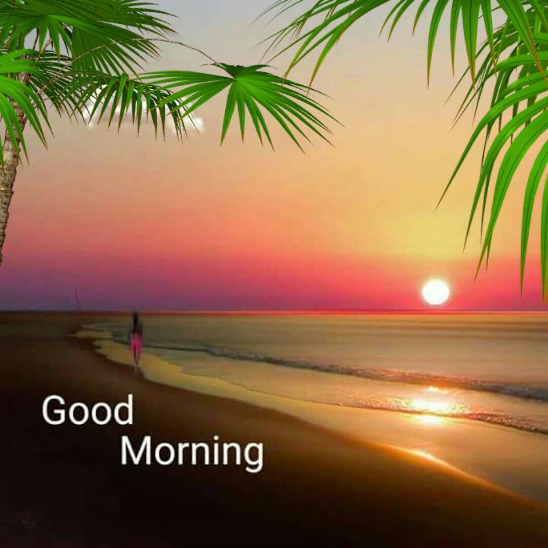 whatsapp-good-morning-image-in-english-16.jpg