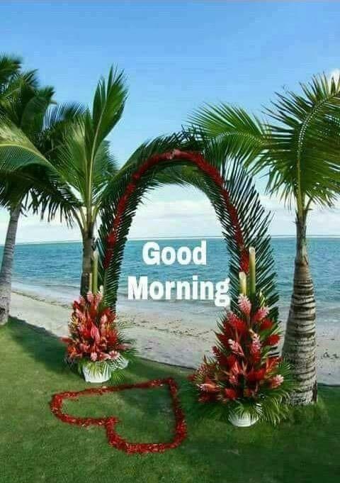 whatsapp-good-morning-image-in-english-17.jpg