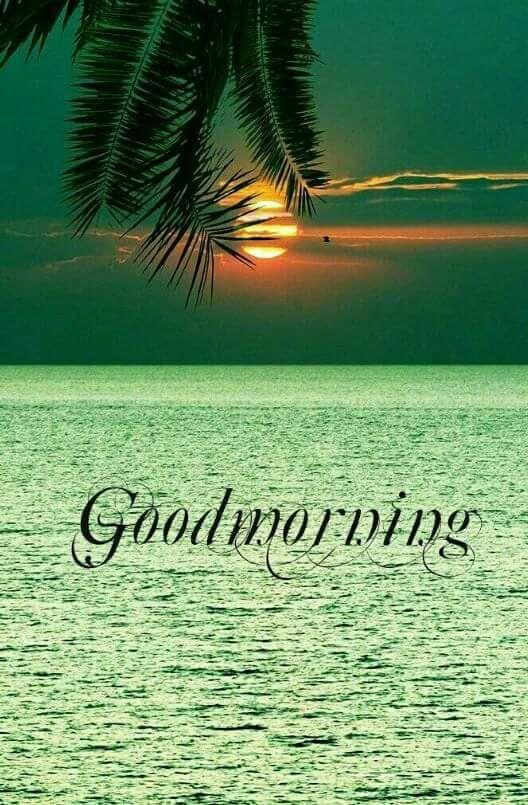 whatsapp-good-morning-image-in-english-19.jpg