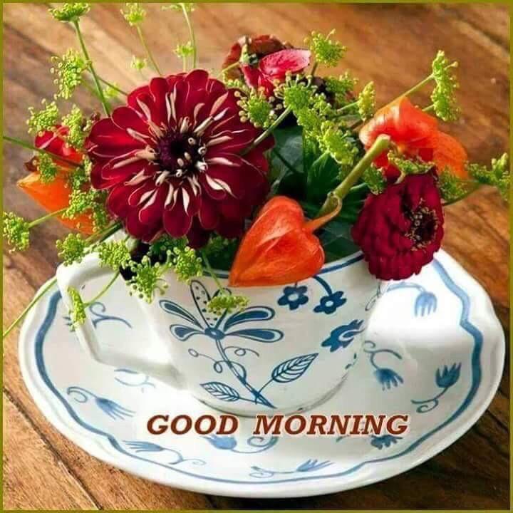 whatsapp-good-morning-image-in-english-21.jpg