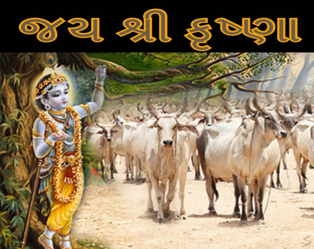 Gujarati-Good-Morning-image-14.jpg
