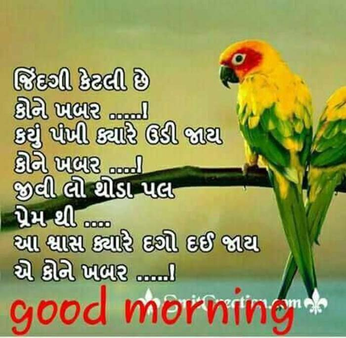 gujarati-motivational-suvichar-status-20.jpg