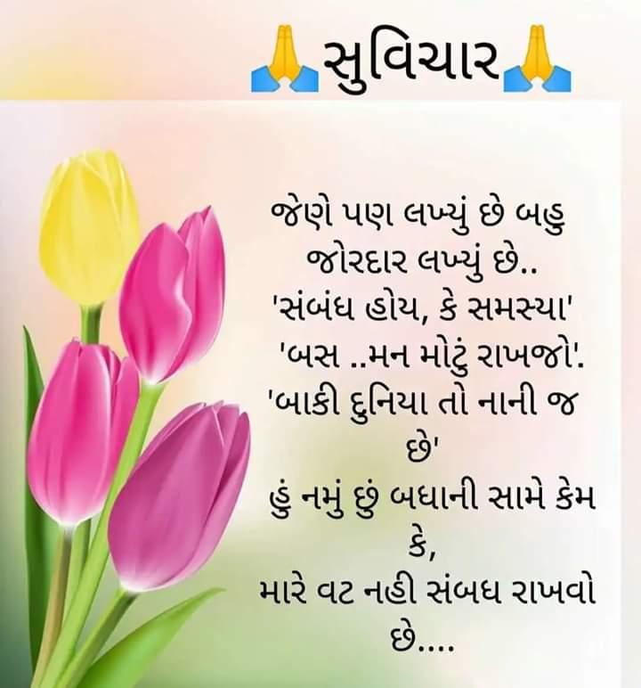 motivational-quotes-in-gujarati-11.jpg