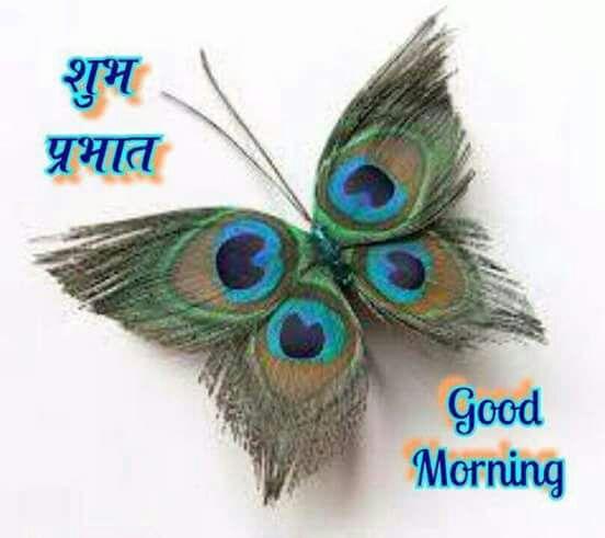 whatsapp-good-morning-hindi-13.jpg