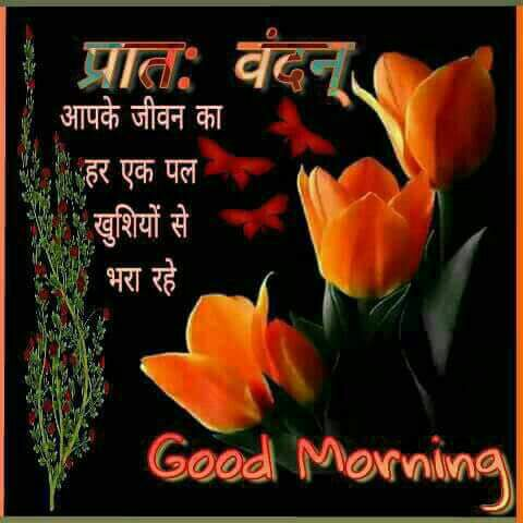 wishes-good-morning-in-hindi-12.jpg