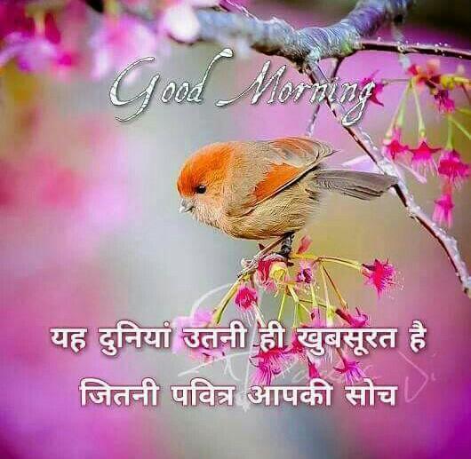 wishes-good-morning-in-hindi-3.jpg
